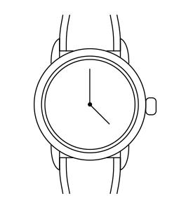 Часы Casio 10433880